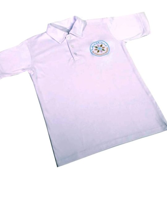 Short sleeve with Collar